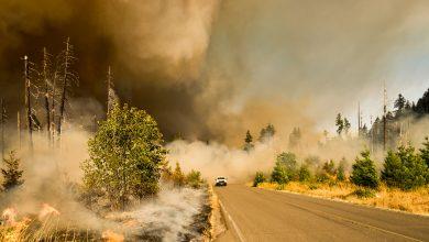 Photo of چهار منطقه از ایالت کالیفرنیا که به علت آتش سوزی، در معرض خطر از دست دادن بیش از 2 تریلیون دلار از ارزش مسکن خود می باشند
